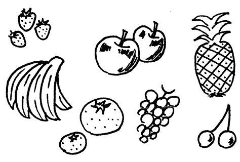 fruit templates clipart best