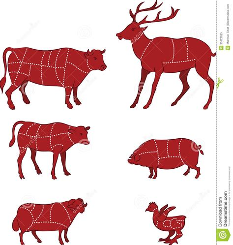 butcher diagram the gallery for gt cow butcher drawing