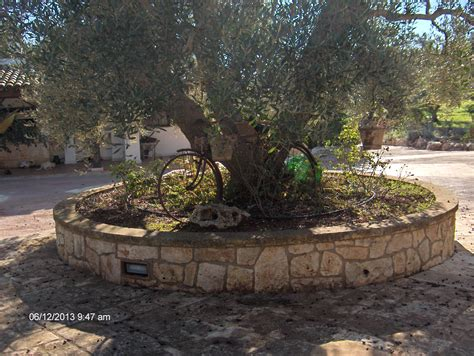 giardini in pietra muretti in pietra per aiuole semplice e comfort in una