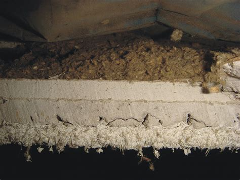Is Ceiling Asbestos by Cross Section Asbestos Sprayed On Acoustical Ceiling