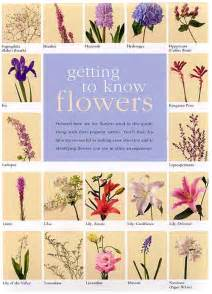 flowers and their meanings new calendar template site