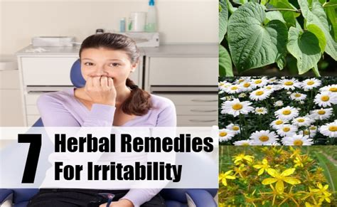 natural remedies for severe pms mood swings herbs for irritability