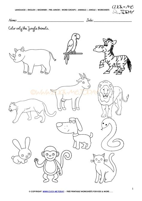 jungle animals worksheet activity sheet color 1