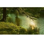 Calm River At Sunset Desktop Wallpaper