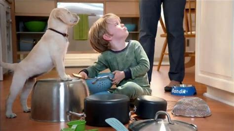 puppy chow commercial purina puppy chow tv commercial bandit s in the kitchen ispot tv