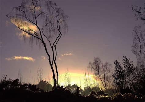 Landscape Gcse 57 Best Images About Gcse Photography On Trees