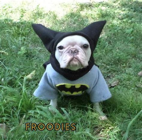 pug batman costume bulldog boston terrier pug froodies hoodies costume