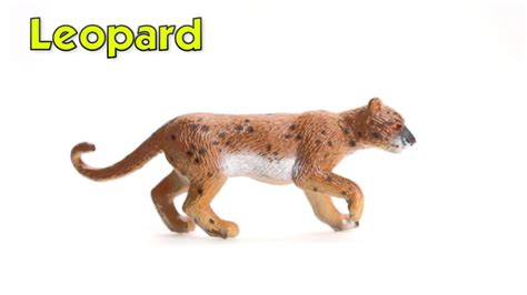 Figure Anjing Safari Ltd Toob safari ltd big cats toob