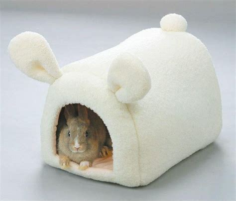 bunny beds 977 best t rex in all her glory images on pinterest ha