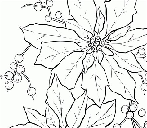 poinsettia coloring page pdf viewing gallery for poinsettia flower coloring page 166869