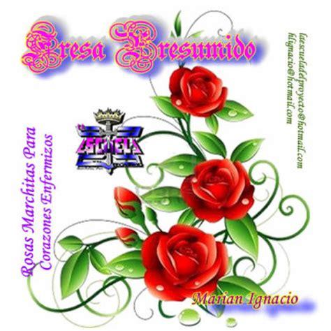 imagenes flores y frases fresapresumido frases de amor