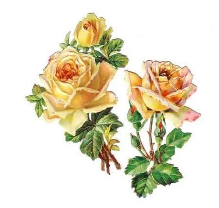 fiori decoupage gialle decoupage amoremio