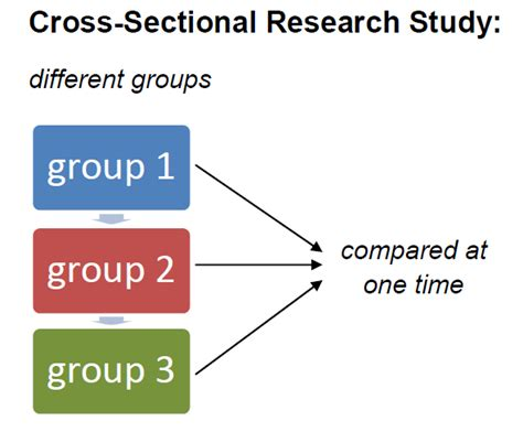 cross section define cross sectional research definition exles video