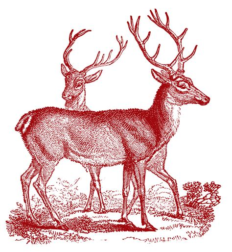 retro clip art vintage clip art lovely deer christmas the graphics