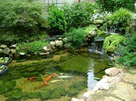 backyard pond landscaping pond landscaping backyard ponds designforlife s portfolio