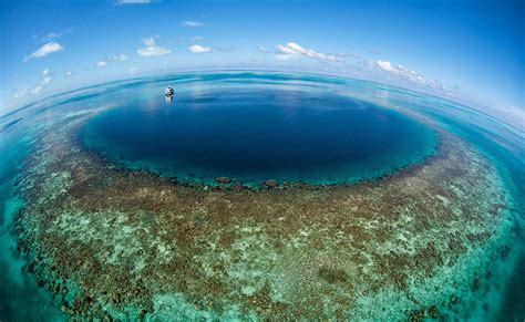 dive belize belize diving adventures your diving expert and sea tour