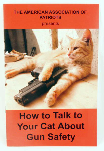 how to my to speak how to talk to your cat about gun safety evolution and abstinence the adventures
