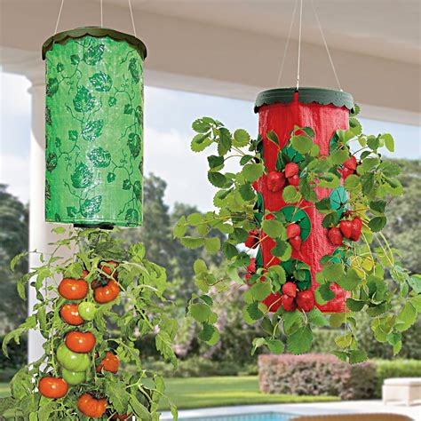 vertical garden wall planter grow bag planter wall planter