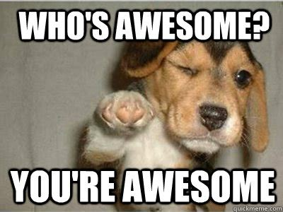Awesome Meme Quotes - who s awesome you re awesome puppy love quickmeme