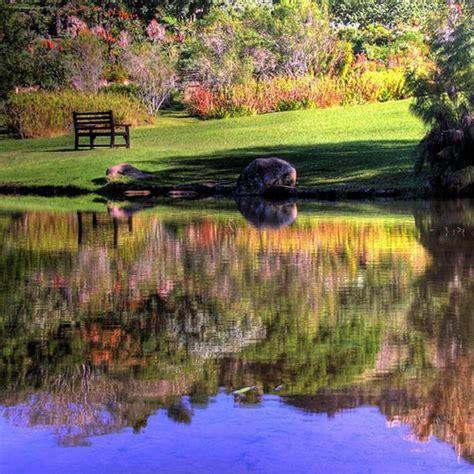 Kirstenbosch Botanical Garden Knowing South Africa Kirstenbosch Botanical Gardens