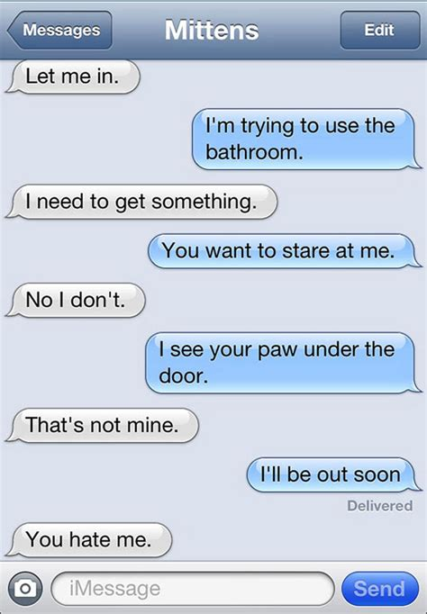bathroom text 15 text messages a cat would send if cats could actually