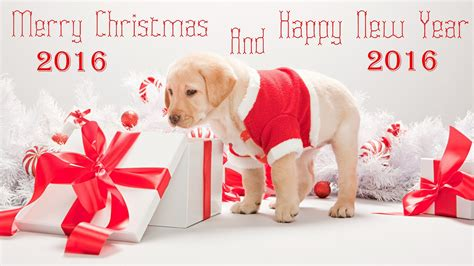 Happy New Year 2016 And Merry Christmas Images | merry christmas and happy new year 2016
