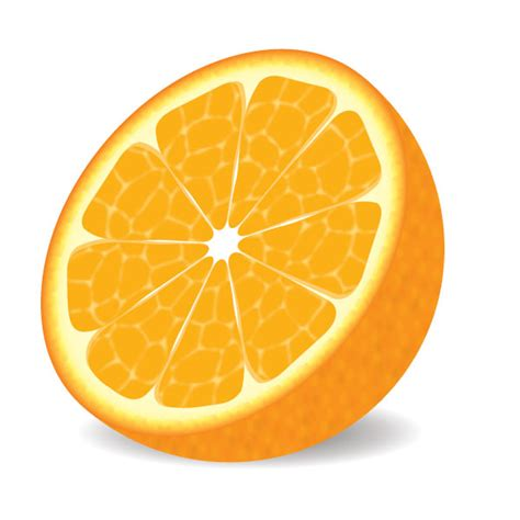 illustrator tutorial orange how to make a delicious vector orange in 9 decisive steps