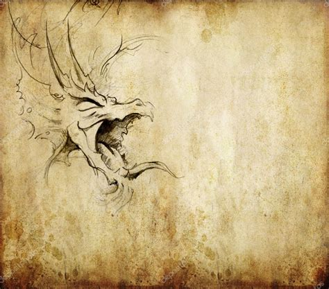 tattoo photo stock tattoo art sketch of a dragon over vintage background