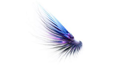 Wings Sayap Peri sayap png clipart best