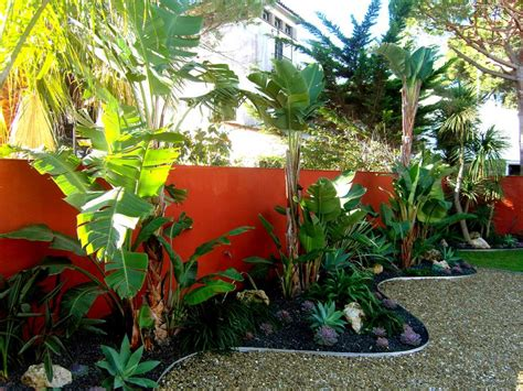 tropical backyard plants 10 beautiful gardens with tropical plants