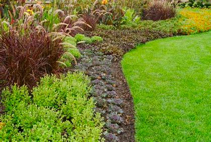 Landscape Edging Easy Landscape Design Border Ideas