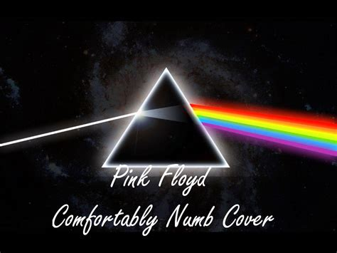 Comfortably Numb Pink Floyd by Pink Floyd Comfortably Numb Cover