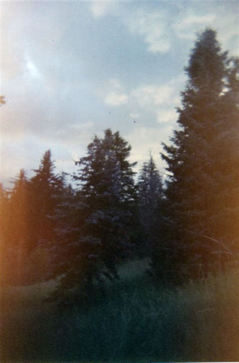 holga double exposure tutorial rachael caringella talk2thetrees holga camera giveaway