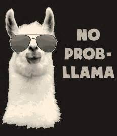 Duvet Shop No Prob Llama Greeting Cards Redbubble