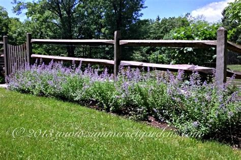 a post and rail fence and perennial planting traditional landscape new york by summerset