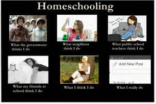 Home School Meme - so you think you want to homeschool vintage lace