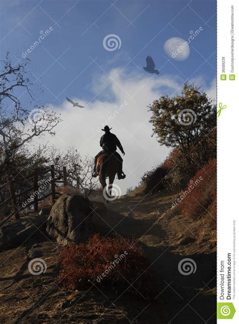 cowboy riding  horse   hill stock image image