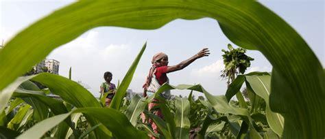 technology  helping indias rural poor world economic forum