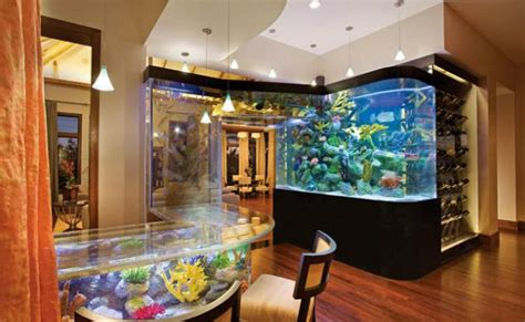 How To Decorate Your Home Fish Tank House