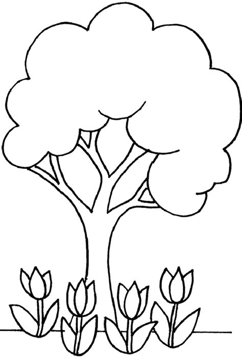 coloring pages plants flowers trees outlines of trees cliparts co