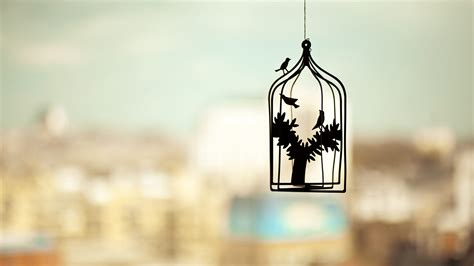 Permalink to Download Free Bird House Images HD
