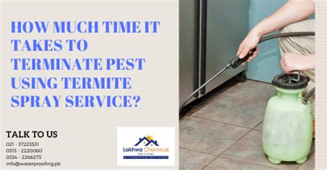 time  takes  terminate pest  termite