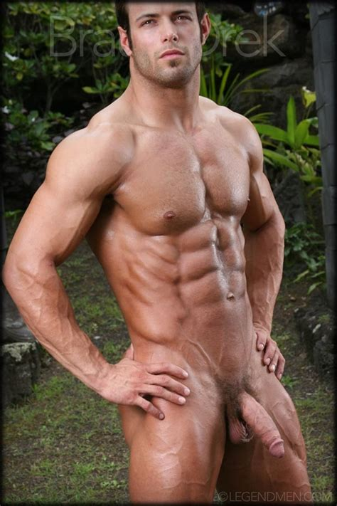 Braun Drek Gay Porn Star Pics Legend Men Hairy Chest Veiny Cock