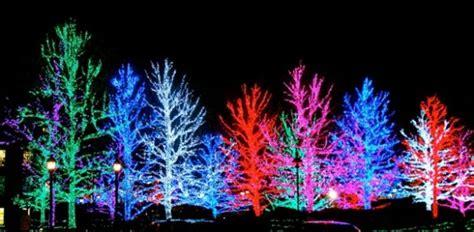 light displays in light displays in louis