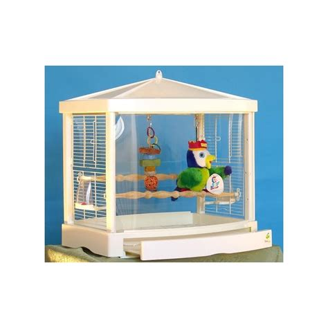 gabbie x pappagalli gabbia in acrilico treetop per pappagallini