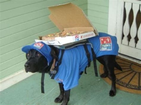 puppy delivery domino s using drones to deliver pizza smosh