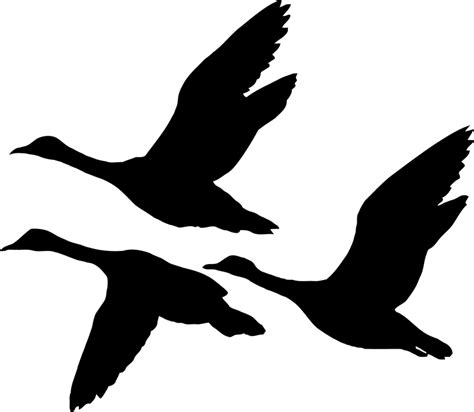 images of geese cliparts co
