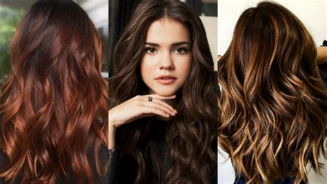 brown hair colors  show  hairstylist