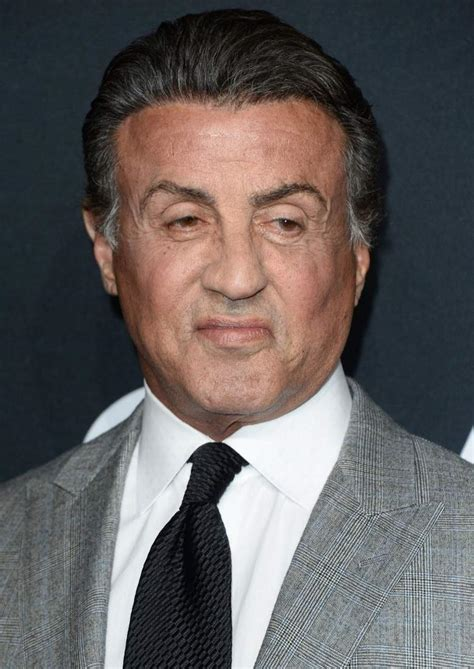 Sylvester Stallone Is In by Sylvester Stallone Age Height 5 Fast Facts Heavy