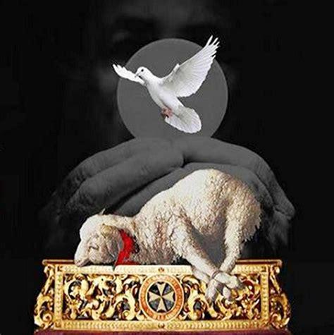 imagenes de jesus con un cordero el cordero se 209 or de la historia 4 1 5 14 en el